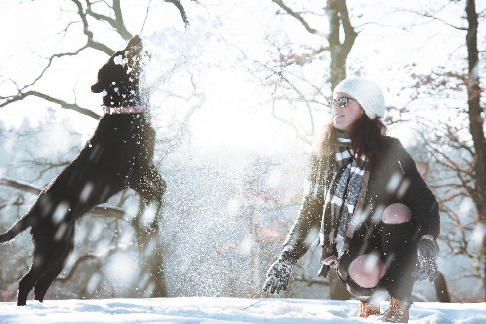 Cani gelo protezione