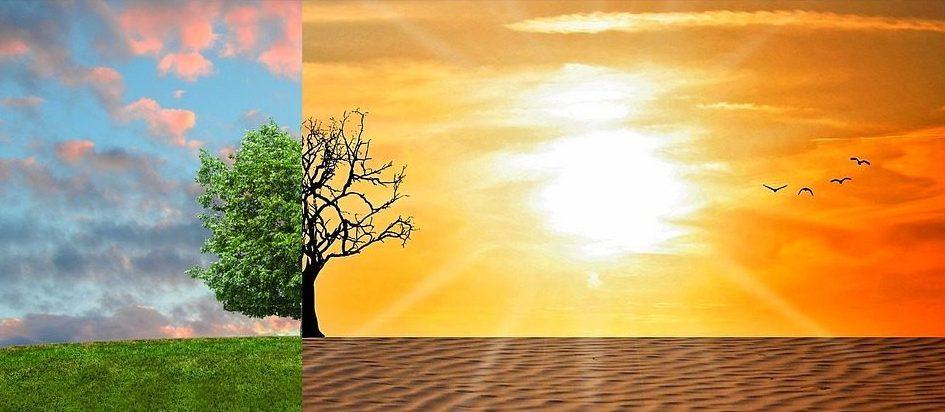 Cambiamenti climatici e deserti