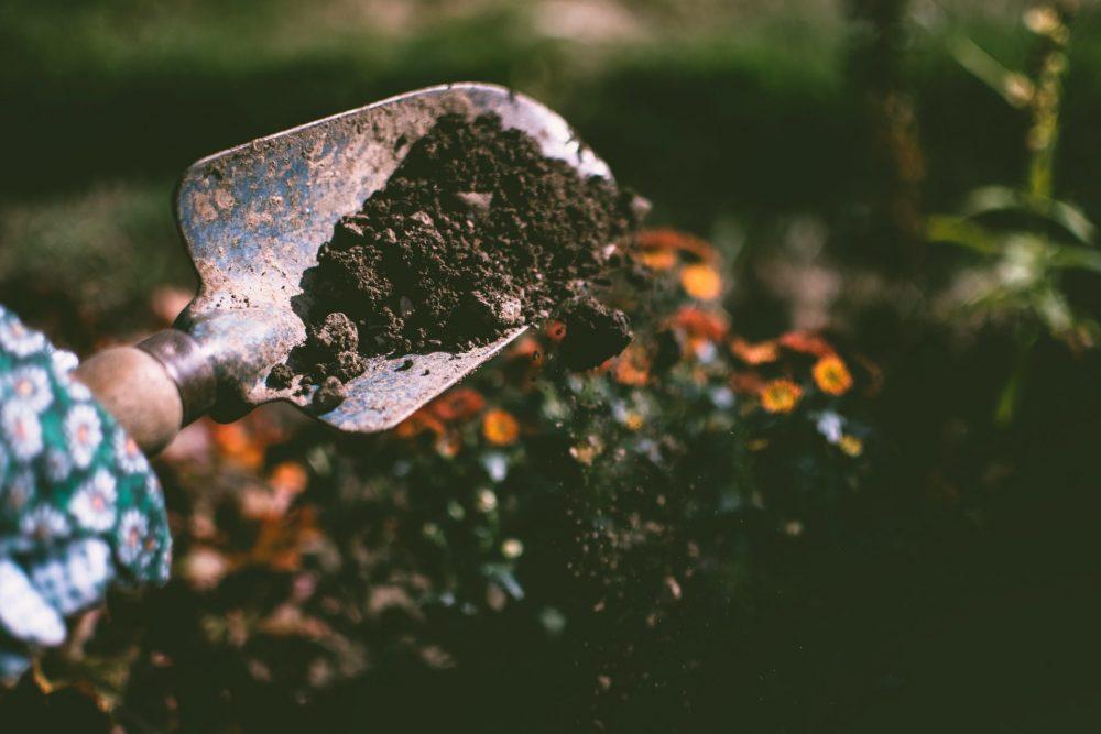 Consigli fai da te per la la bellezza del tuo giardino