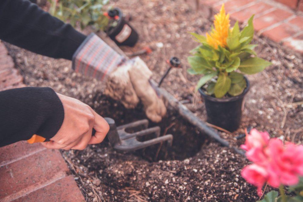 bravo giardiniere