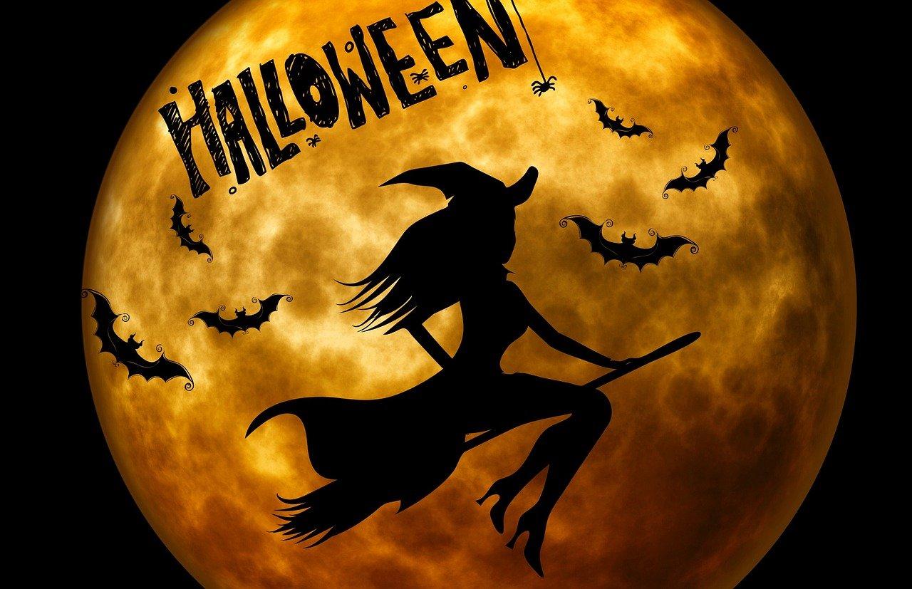 Halloween in casa come intagliare una zucca