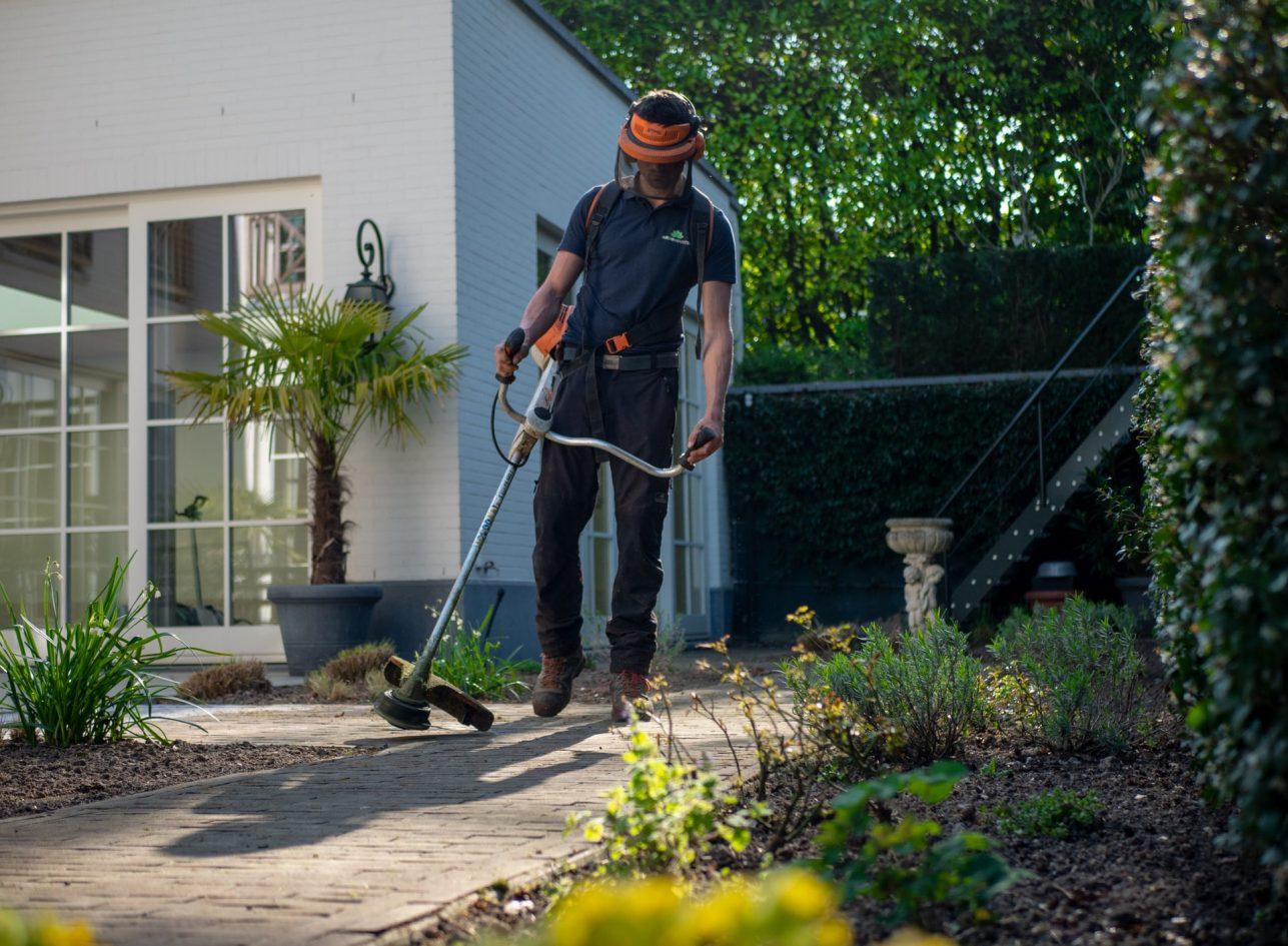 lavori di giardinaggio attrezzi